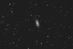 Galaxy NGC 2903 in Leo
