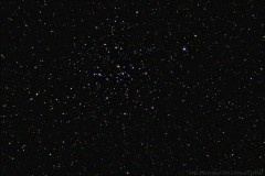 Open cluster Messier 41 (M41) in Canis Major